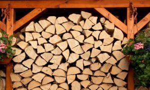 Brennholz Kaminholz Berlin günstig kaufen
